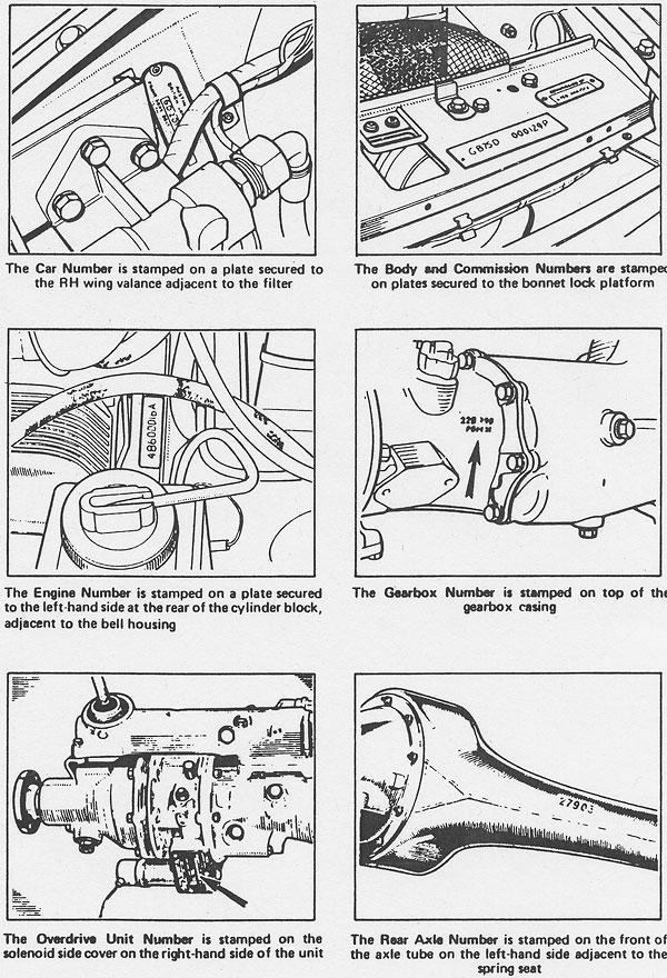 Moss Motors' MGB GT V8 Parts Supplement (Illustrated Auto
