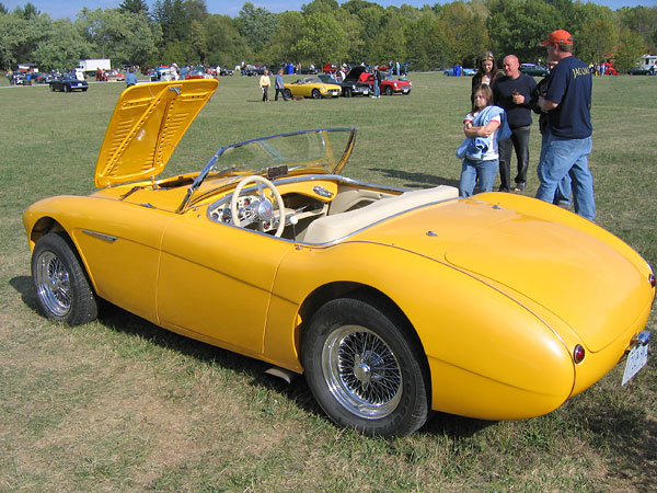 Austin-Healey with Jaguar v12 swap