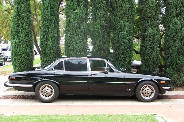 1979 Jaguar Xj6 Interior  galleryhipcom  The Hippest